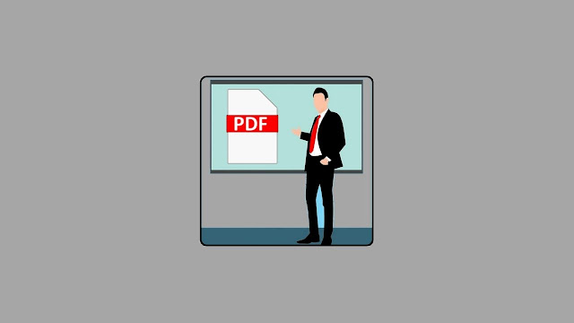 PCWinSoft PDF Slide Show Presenter