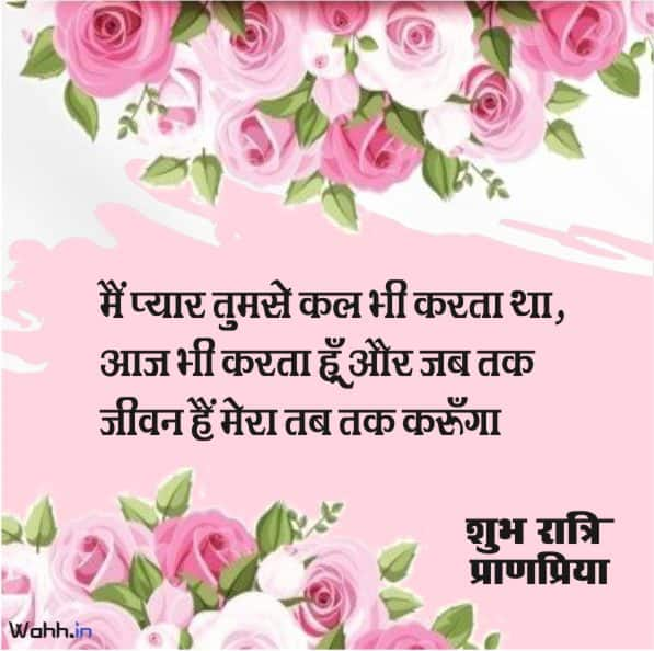 Good Night quotes For Wife In Hindi