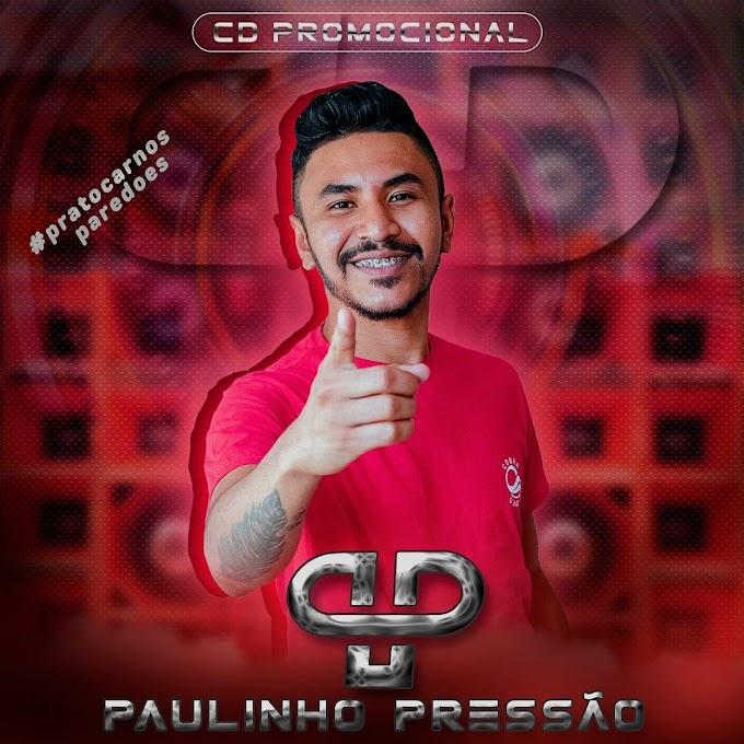 PAULINHO PRESSAO - CD PROMOCIONAL 2020 (PRA PAREDAO)
