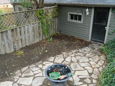 Leslieville Toronto Fall Cleanup After by Paul Jung Gardening Services--a Toronto Gardening Services Company