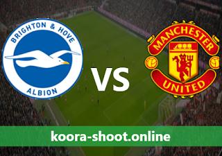 بث مباشر مباراة مانشستر يونايتد وبرايتون اليوم بتاريخ 04/04/2021