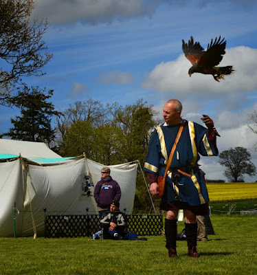 English Heritage Hadrian's Wall Chester's Roman Fort Falconry