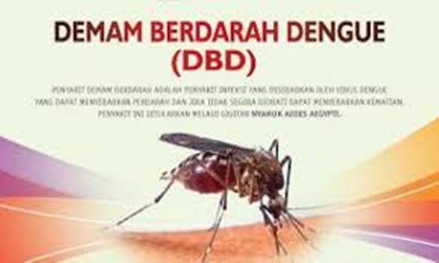 Pengertian Penyakit Demam Berdarah Atau Demam Dengue (DBD)