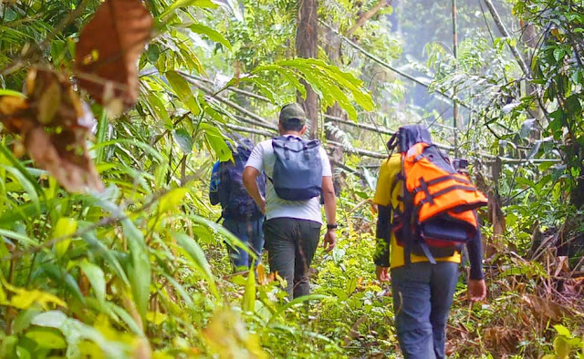 pachmarhi tour package