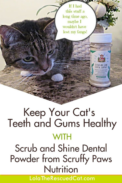 Scruffy Paws Nutrition