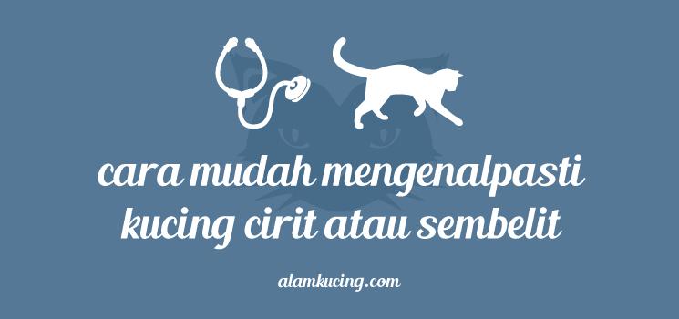 Kenalpasti kucing cirit atau sembelit