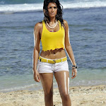 Sharaddha das hot pics in mogudu movie