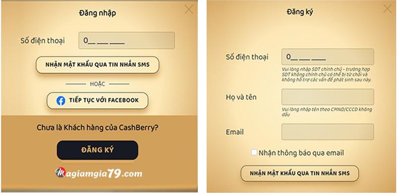 Vay tiền nhanh online trả góp cashberry