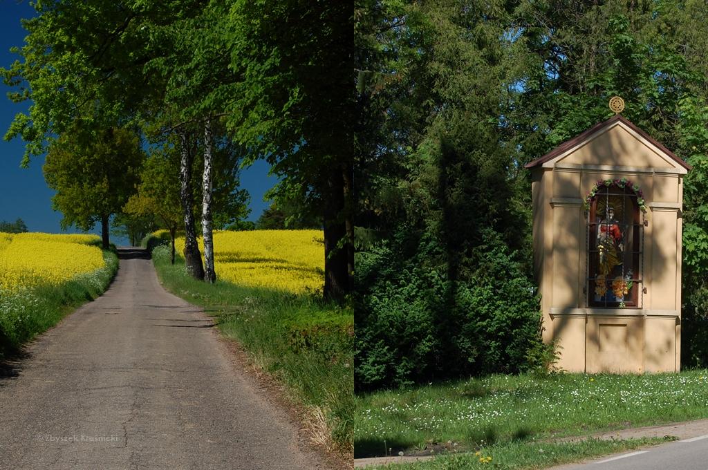 Barczewo-Jesionowo   Najpiękniejsza trasa rowerowa po Warmii tej wiosny