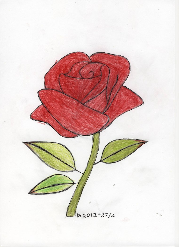 It is a photo of Juicy Rose Drawing Color