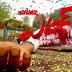Attack (2016) Telugu