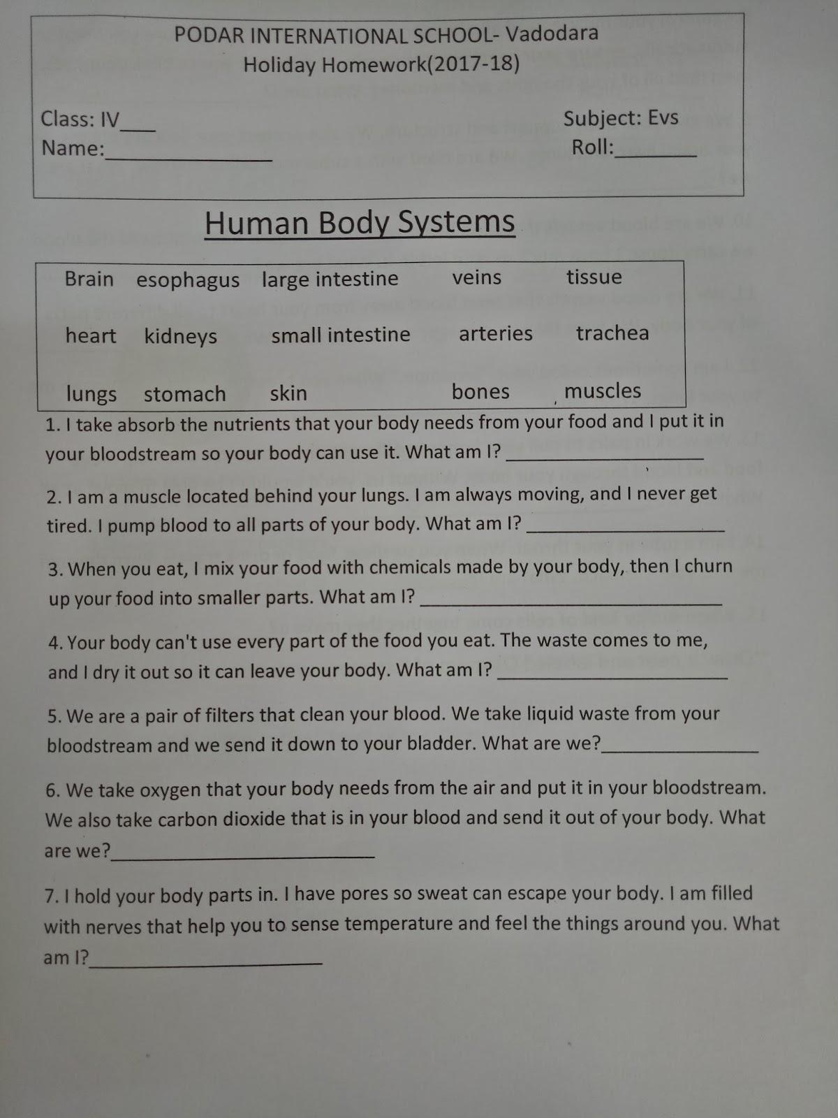 Pis Vadodara Std 4 Evs Human Body Systems Holiday Homework