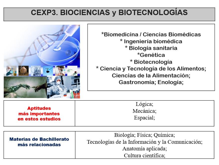 oriéntate y elige tu futuro - Colegio San Agustín, Madrid: CEXP3 ...