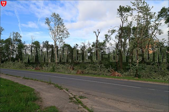 Деревья в парке повалены ураганом, виден дворец Чапских в Прилуках