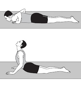 wellness for life bhujangasan cobra pose