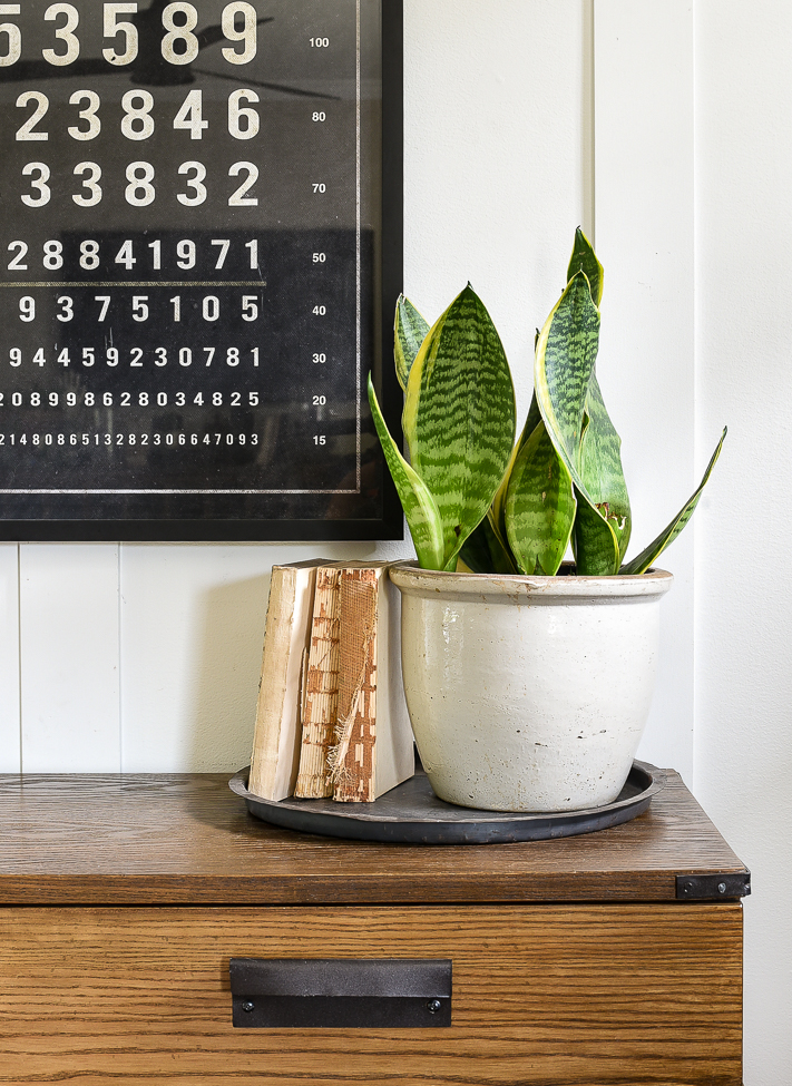 Using a tray to ground decor