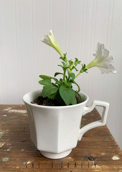 Delicate white tea cup with Petunia's for Mother's Day.