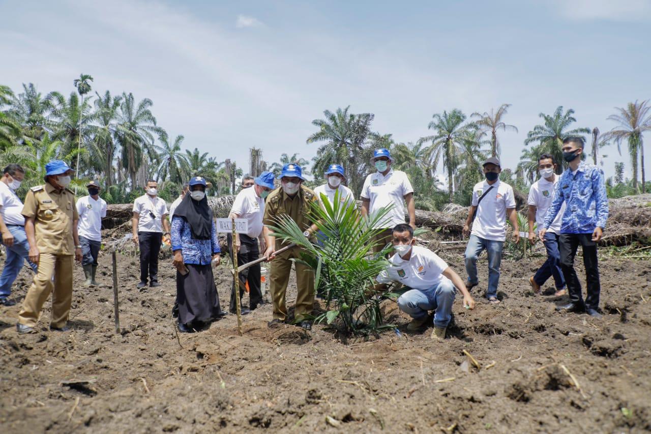 Pemkab Asahan Dukung Kemitraan Kerja Sama Pembangunan Kebun PT BSP TBK Dengan Gapoktan Sinar Lestari