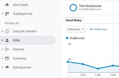 Analytics ekran görüntüsü - Kitle