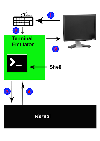 Command Execution Process, Shell