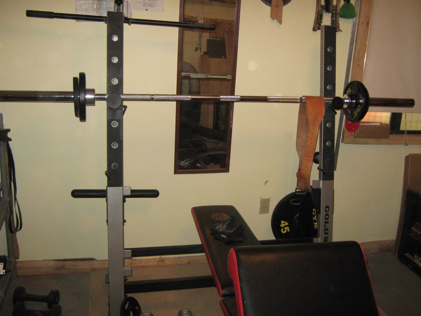 Mcelmurray S Mountain Retreat Gold S Gym Olympic Size