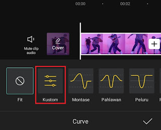 choose the custom curve type