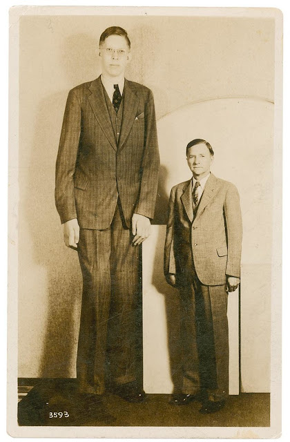 tallest person of world, tallest person in the world, who is tallest person in the world, who is the tallest person in the world, how tall is tallest person in the world, how tall is the tallest person in the world, tallest guy in the world, tallest person in the world 2020, tallest person in the world alive, tallest person in the world ever, tallest person in the world, who is the tallest person in the world, tallest person in the world alive, tallest person in the world, who is tallest person in the world, how tall is tallest person in the world, tallest person in the world 2020, tallest person in the world alive,Top 10 Tallest Persons In The World