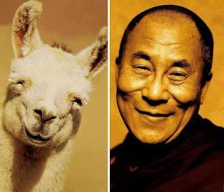 los dobles de los famosos - humor - dalai lama