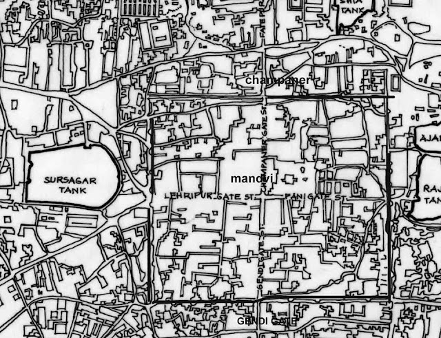बडोद्यातील विनाशकारी प्लेग, 1896 (KILLER  PLAGUE 1896 IN VADODARA)