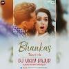 Bhankas Tapori Mix Dj Vicky Rajur