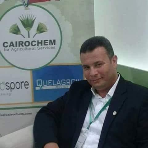 المهندس أبونعمة محمد أبو نعمة : خطة لزراعة 50 ألف فدان غابات شجرية فى الظهير الصحراوى