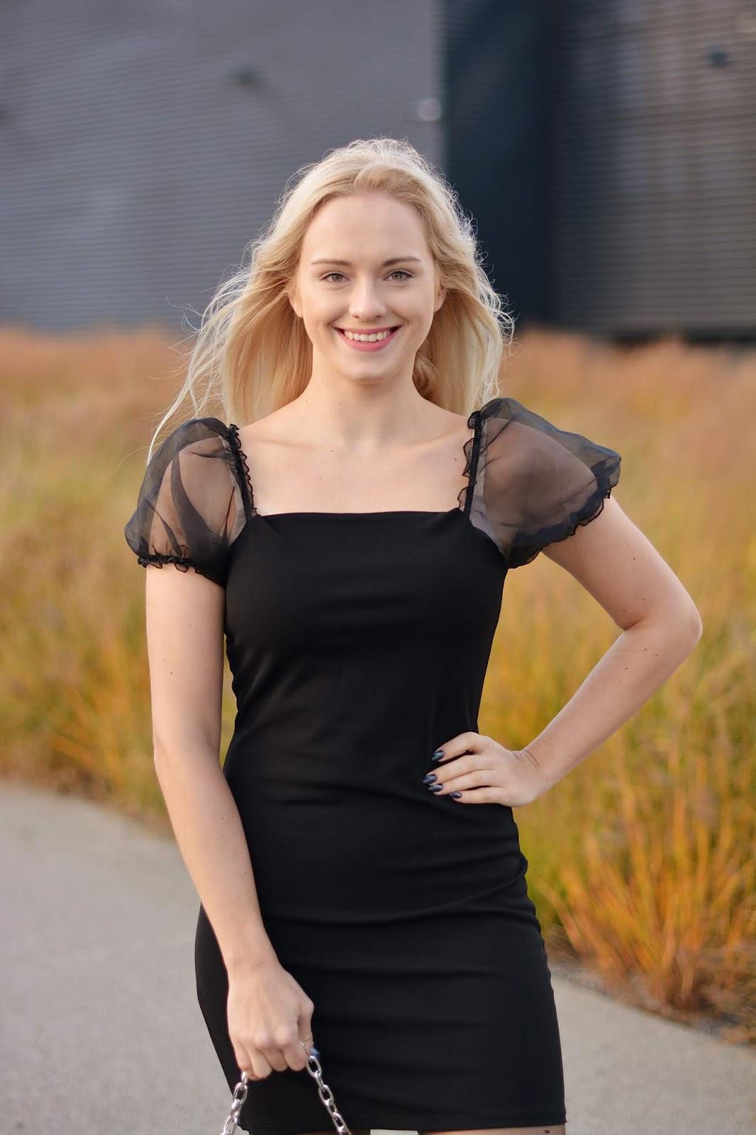 Black Mesh Puff Short Sleeve Organza Mini Dress