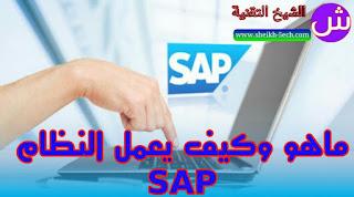 ماهو وكيف يعمل النظام SAP