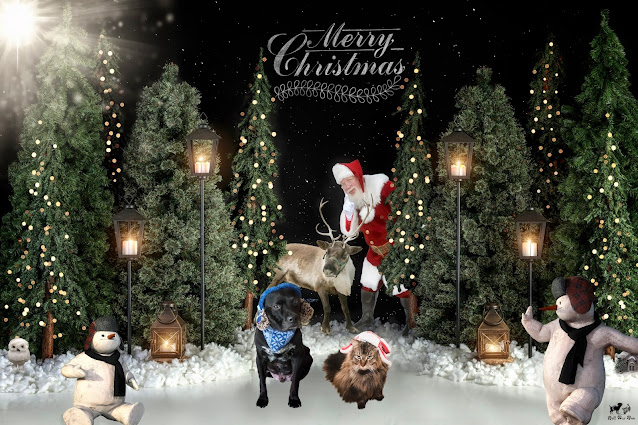 Bell Fur Zoo Christmas Card 2020 (©Jenny Bell @ Bell Fur Zoo)