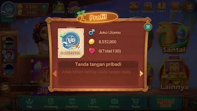 Profil Higgs Domino Island