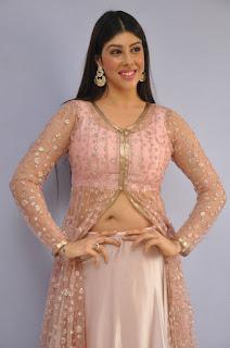 Actress Aditi Singh Latest Stills in Designer Dress at Guppedantha Prema Pressmeet 0010.jpg