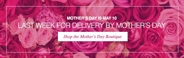 Avon Free Shipping on $25 - May 1, 2015 Only