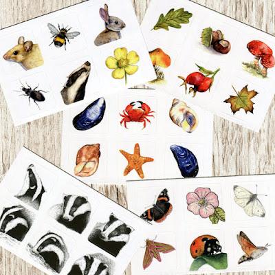 Watercolour wildlife stickers