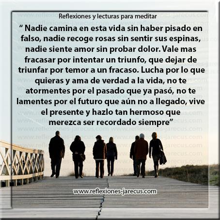 camina, dolor, espinas, falso, fracaso, triunfo, vida, Reflexiones de Vida,