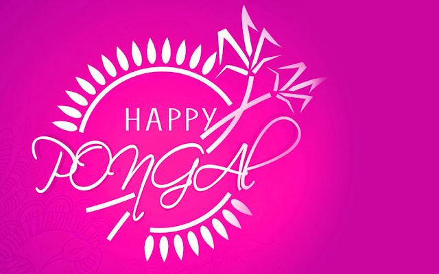Pongal Fesatival Images