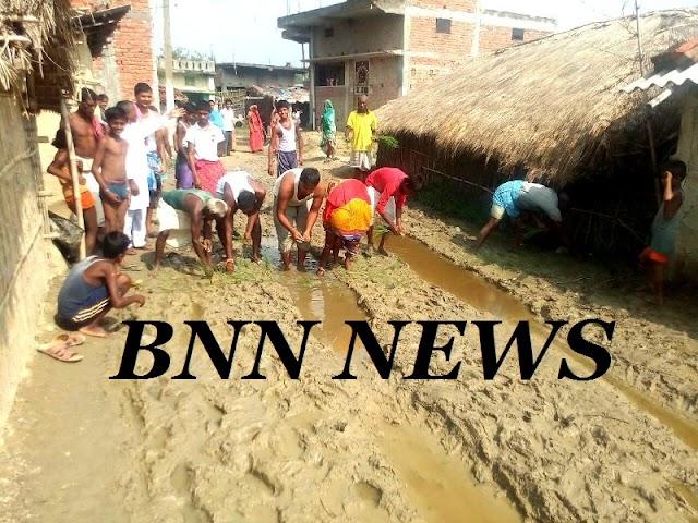 सड़क निर्माण नहीं होने से नाराज ग्रामीणों ने की धान की रोपनी