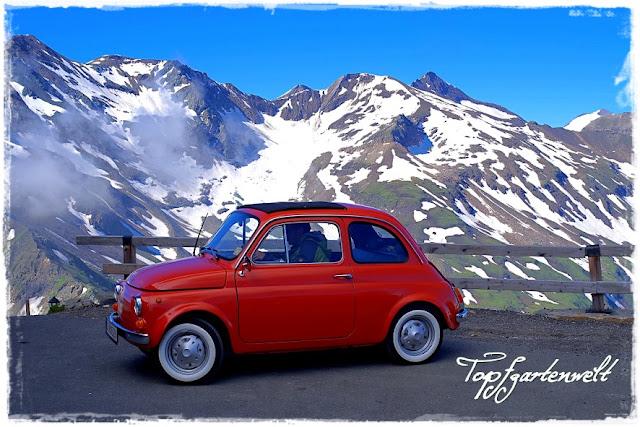 Edelweißhütte | Großglockner | Fiat 500 | Oldtimer - Blog Topfgartenwelt