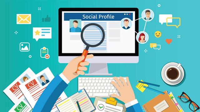 Gói 300 Link Entity Profile Chất Lượng DA VIP