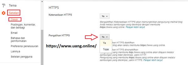 Cara Aktifkan HTTPS di Blog Domain TLD