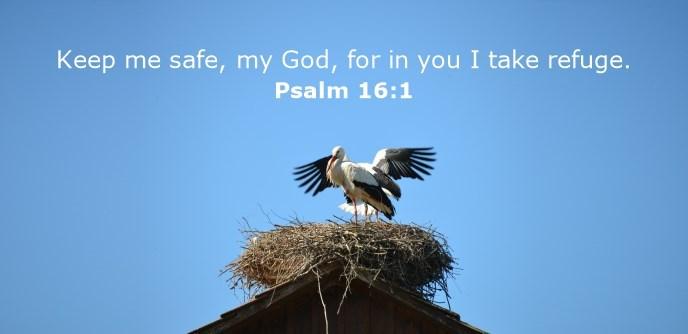 Keep me safe, my God, for in you I take refuge.
