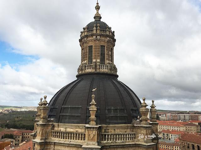 Torres Clerecía cúpula
