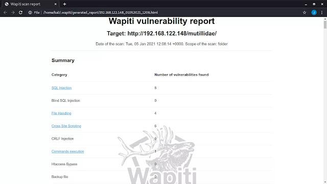 wapiti full report