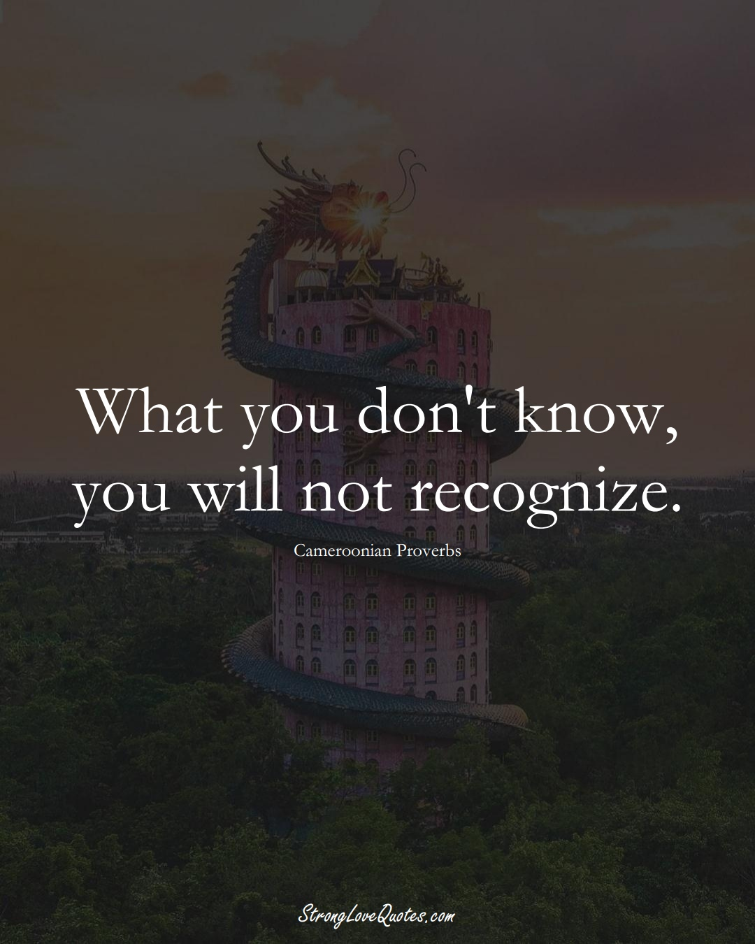 What you don't know, you will not recognize. (Cameroonian Sayings);  #AfricanSayings