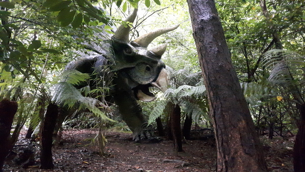 The triceratops at Combe Martin Wildlife and Dinosaur Park