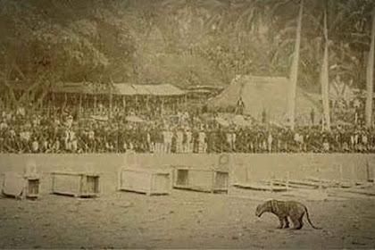 Pertarungan Manusia Melawan Harimau dalam Tradisi Rampogan